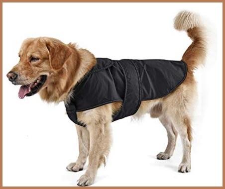 Abbigliamento Per Cani Taglia Media