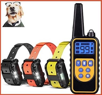 Accessori educativi e per addestramento cane
