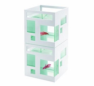 Acquario Per Pesci Rossi Stile Appartamento