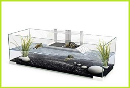 Acquario Tartarughe D'acqua Grande