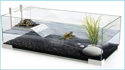 Acquario Tartarughe D'acqua