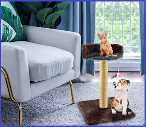 Tiragraffi per gatti piccoli