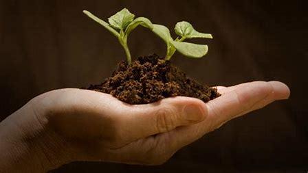 Articoli monouso ecosostenibili, ecologici,biocompostabili