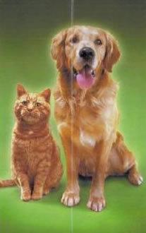 Prodotti per gli amici animali