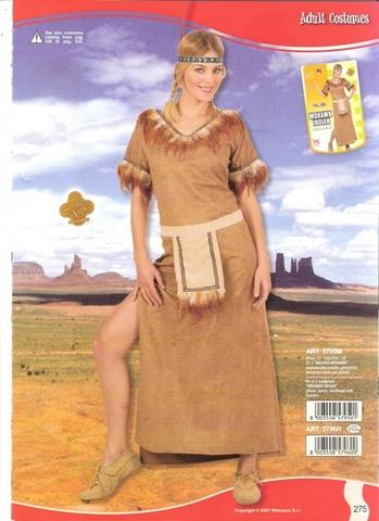 Vestito di carnevale indiana