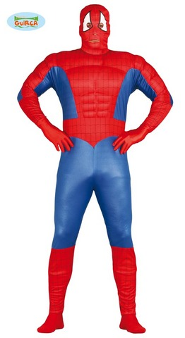 Costume di carnevale da spiderman