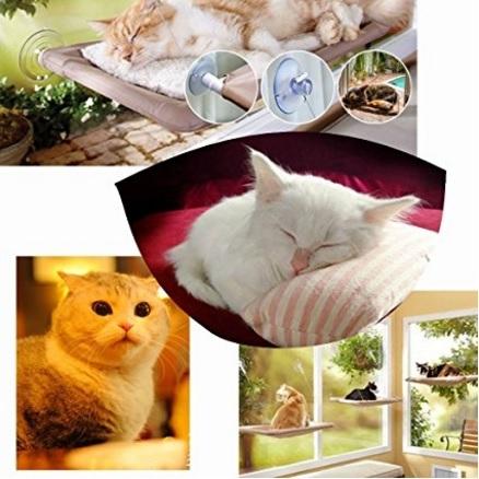 Mensola amaca per gattini
