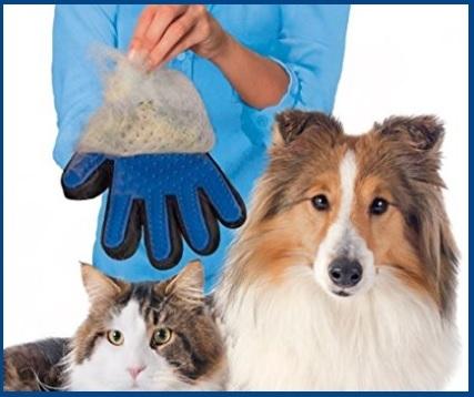 Gatti accessori casa