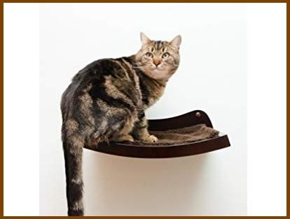 Mensole per gatti grandi