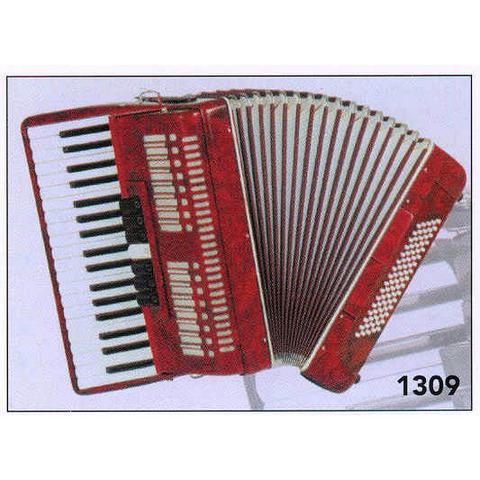 Fisarmonica 80 bassi roling's 1309