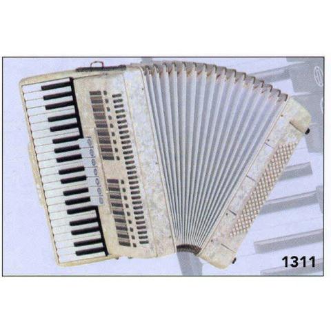 Fisarmonica 120 bassi roling's 1311