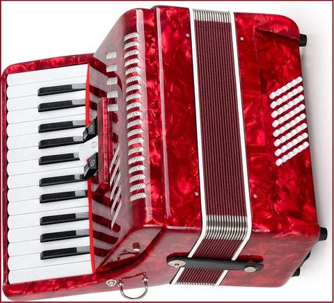 Fisarmonica 48 bassi roling's jh2005