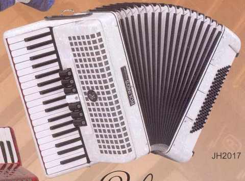 Fisarmonica 96 bassi roling's jh2017