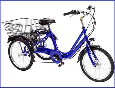 Bicicletta Tre Ruote Assistita