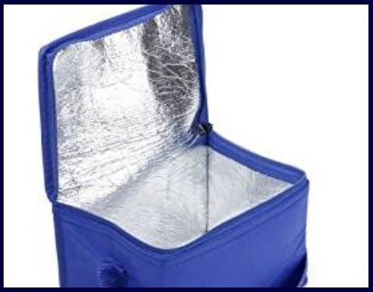 Borsa frigo compatta portatile