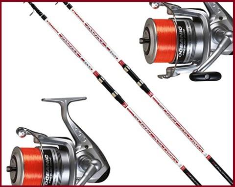 Canna da pesca mulinello professionale