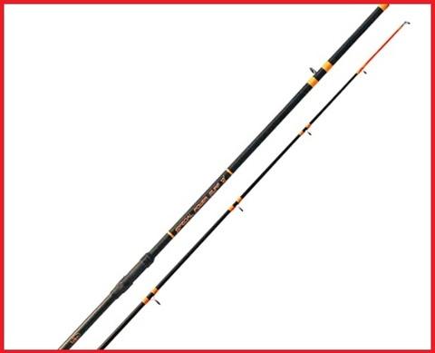 Canna da pesca per storioni