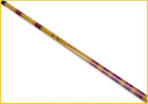 Canna Da Pesca Fissa 6 Metri
