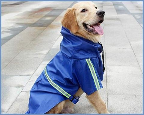 Cappotto per cane taglia media