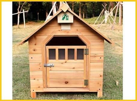 Casette in legno per ricovero animali