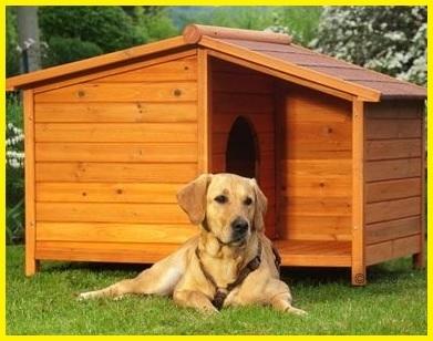 Casette per animali da cortile in legno