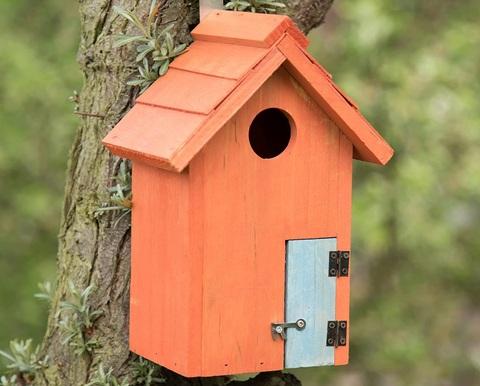 Casetta Uccelli Da Appendere