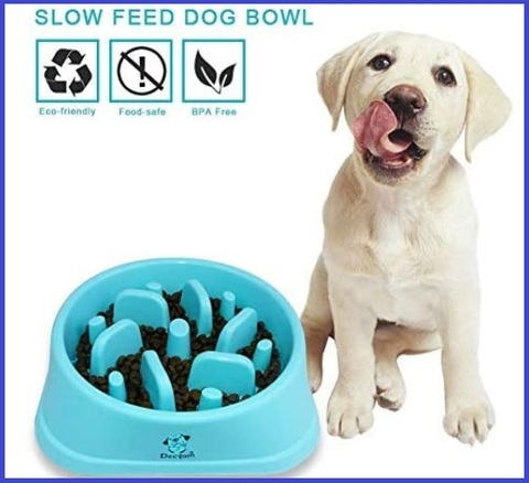Ciotola anti ingozzamento cani