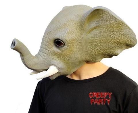 Immagini animali halloween elefante