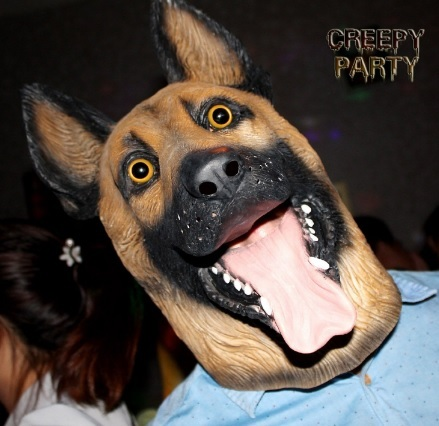 Foto animali halloween cane lupo