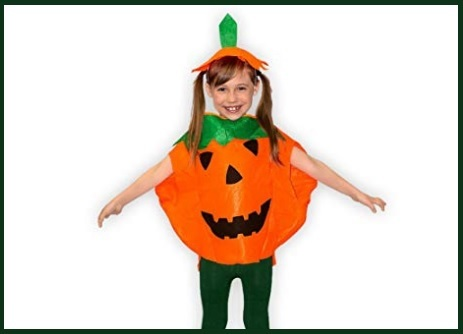 Halloween zucca costume