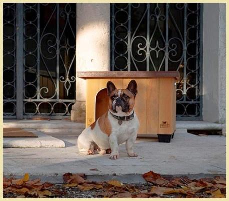 Cuccia legno esterna per cani