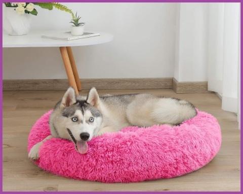 Cuccia rosa per cani