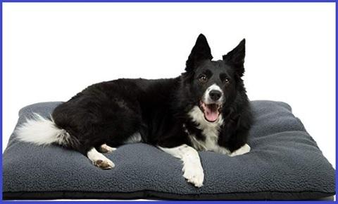 Cuscini per cani grandi sfoderabile