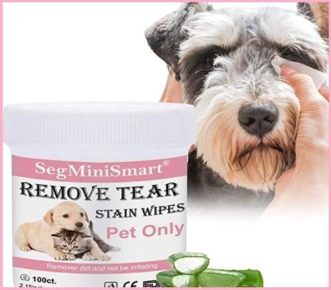 Disinfettante per cani zampe