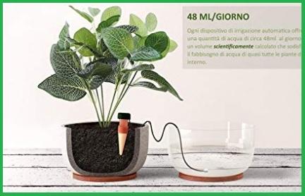 Dosatori acqua per piante
