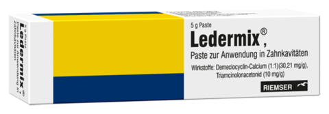 Ledermix pâte 5 g