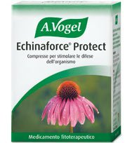 Vogel echinaforce cpr 120 pce
