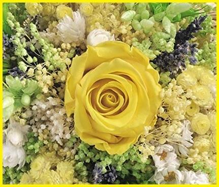 Fori bouquet freschi