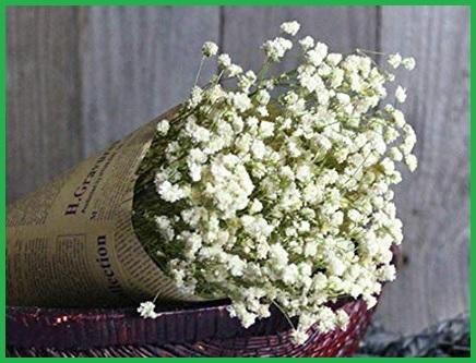 Composizione fiori secchi da appendere