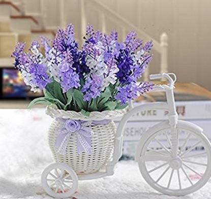 Fiori lavanda con vaso bicicletta