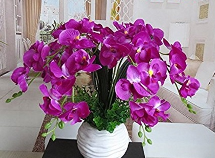 Phalaenopsis composizione floreale artificiale