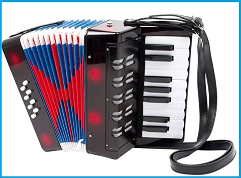 Fisarmonica strumento musicale