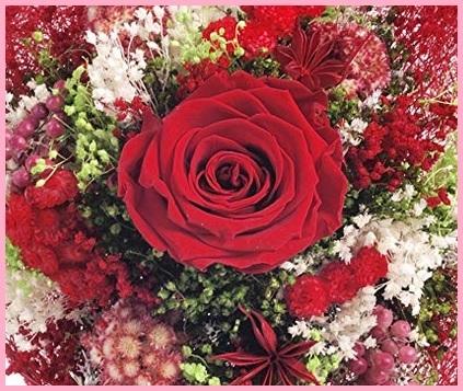 Fiori Freschi A Domicilio Mazzo Rose