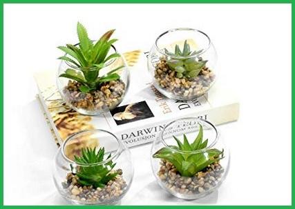 Vari vasi in vetro nel negozio