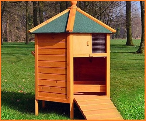 Gabbie per galline da esterno in legno