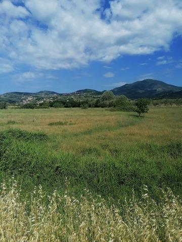 Terreno Agricolo 88 Località Culico