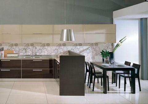 Cucina vetro temperato con fuochi su penisola angolare for Ingrosso oggettistica cucina