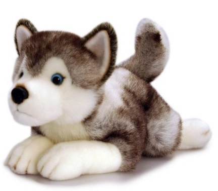 Peluche cagnolino husky con occhi azzurri grandi sconti modellismo dinamico e statico - Husky con occhi diversi ...