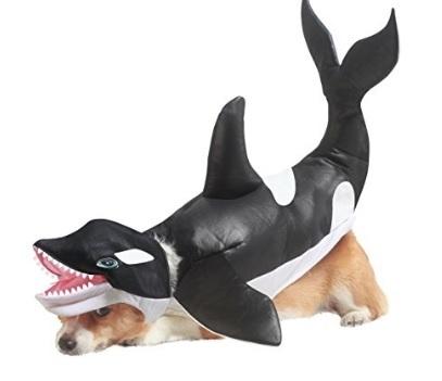 Costume Da Orca Per Cagnolino