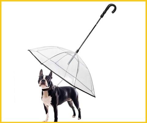 Ombrello cane grande